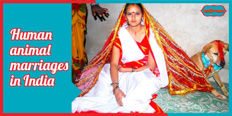 indianness,human animal marriage in india,superstition in india,social awareness