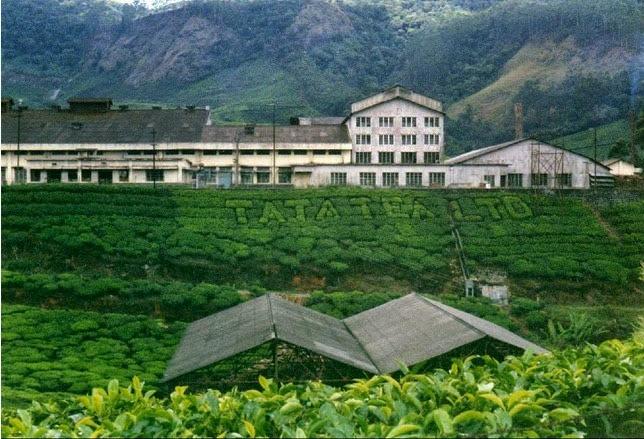 TATA Tea Museum,munnar