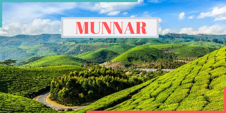 munnar,tourist destination,india,indianness