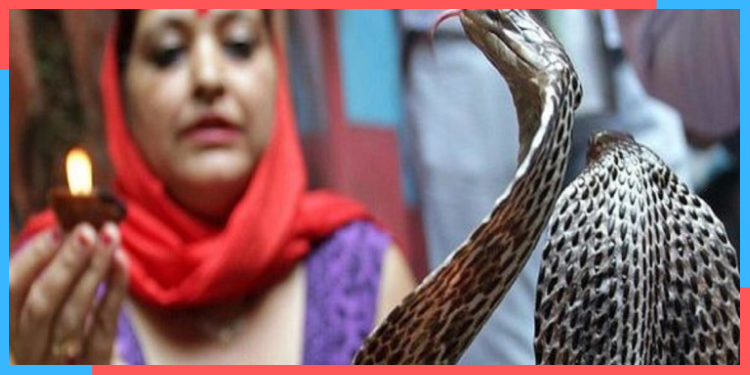 snake village in india,india,indianness,kya aap jaante hai,indian crazy culture