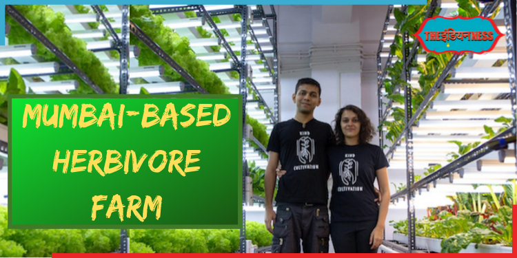 Mumbai First Herbivore Farm,hydroponic farming,joshua leiws,sakin rajkotwala,india,indianness