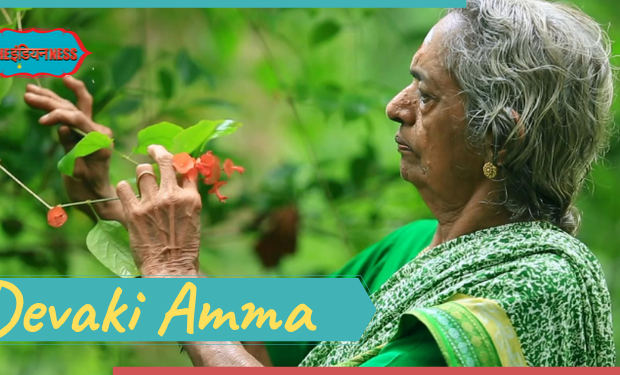 devaki amma,the forest women of india,india,indianness