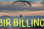 bir billing
