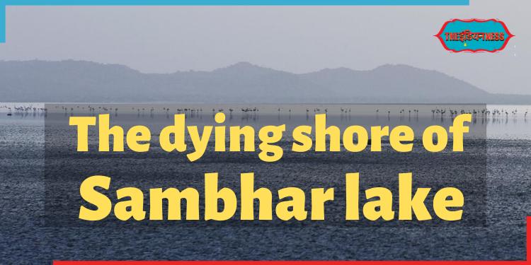 sambhar lake