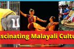 Malayali