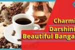 Darshinis
